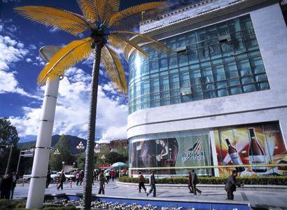 chinas failed tibet policies 11
